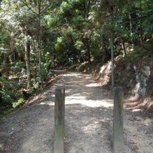 Hatea River Walk