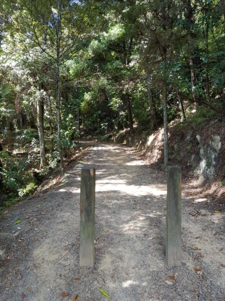 Parihaka Scenic Reserve