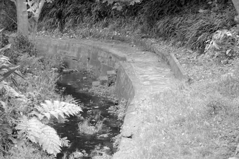 The Swimming Pool in Kamo